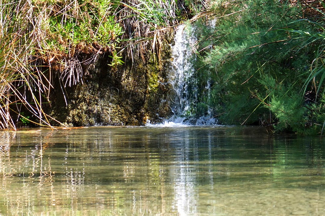 ríos en la región de murcia
